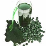 Chlorella aus der PRAXIS für Gesundheit und Lebensfreude