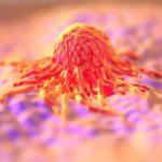 Physik der Krebszelle