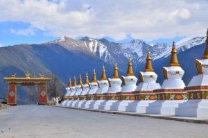 Tibetischer Typentest